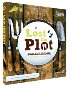 Lost_the_Plot_3D_mid